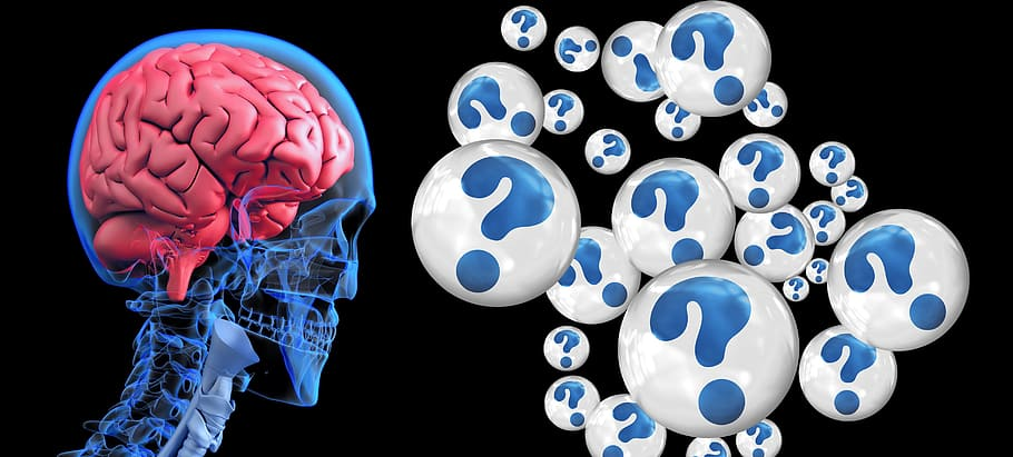 brainqmark